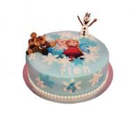 Frozen 3D taart bezorgen in Oterdum