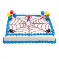 Spiderman Taart bezorgen in Zwolle